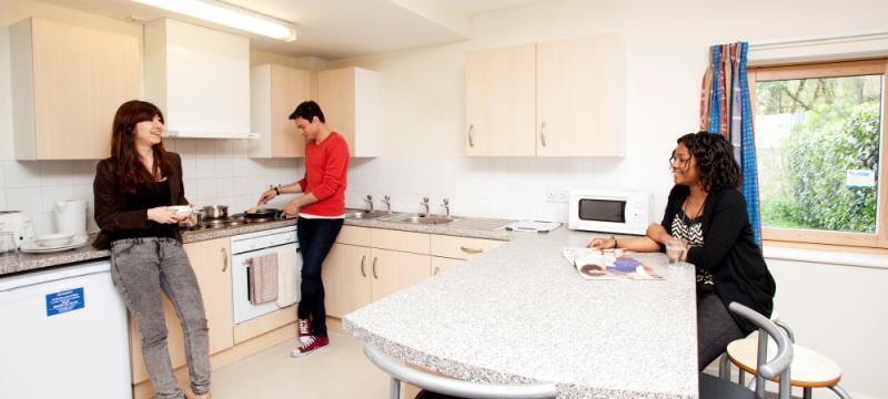 Imagen de la cocina de la residencia en Hamstead