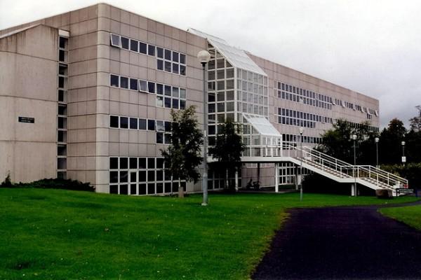 Estudia inglés en la Universidad de Dublín